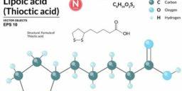 Польза альфа-липоевой кислоты